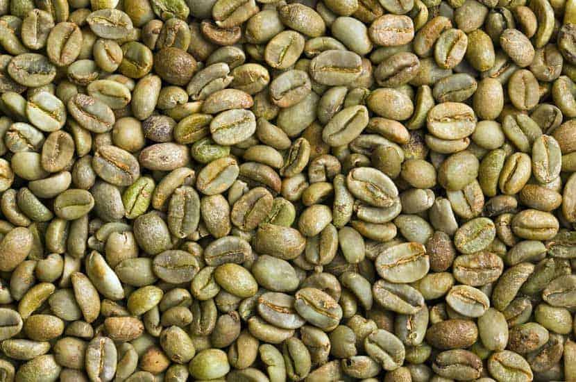 Idealica - Składnik naturalny #1 Ekstrakt z zielonej kawy