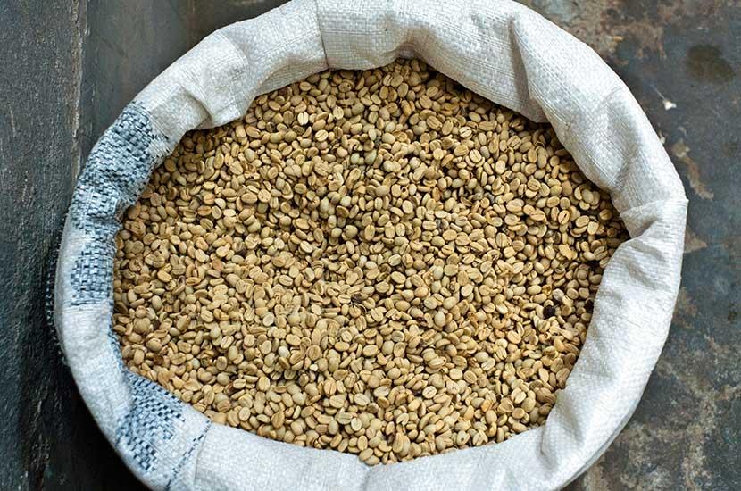 Kwas chlorogenowy jest obecny w niepalonej zielonej kawie