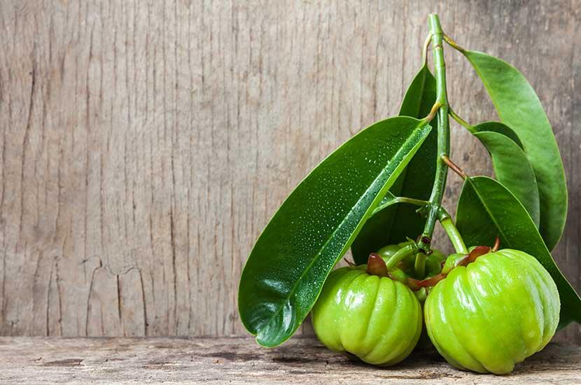 Wyciąg z kambogii Garcinia może pomóc kontrolować apetyt