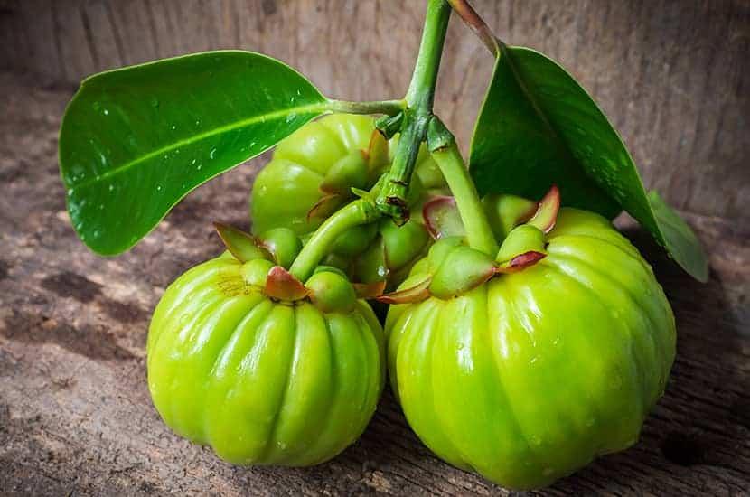 Badania sugerują, że Garcinia cambogia może pomóc w spalaniu tłuszczu i utracie wagi