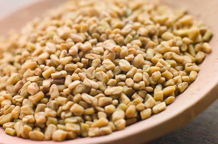 Nasiona kozieradki mogą stymulować produkcję testosteronu