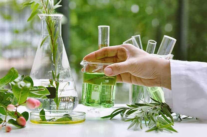 Formuła kremu grzybobójczego zawiera pnącza, farnezol, witaminę E i olejki eteryczne.