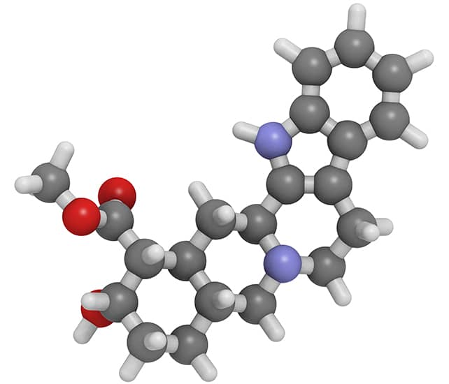 Johimbina zawiera cząsteczki afrodyzjaku